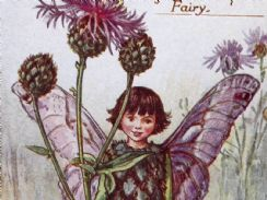 20th March 2019. Cicely Mary Barker Fairies